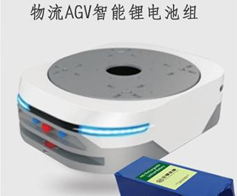 物流AGV智能R485通讯动力锂电池组